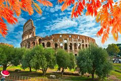 Colosseo, Rome, Italy. View of the Colosseo on a sunny day with autumn leaves, Rome, Italy Stock Images