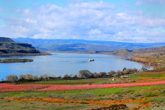 View of Columbia River Gorge royalty free stock image
