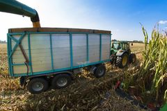 View from combine to trailer and tractor Stock Photo