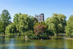 View of the Common park lake in Boston Stock Images