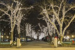 The Commonwealth Avenue in Boston for Christmas. A view of the Commonwealth Avenue in Boston for Christmas Stock Photography