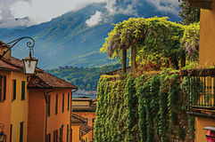 View of Como Lake, balconies with open blinds and bindweed in Bellagio. Royalty Free Stock Images