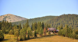 View of coniferous forest and mountain, hut in the forest Royalty Free Stock Photos