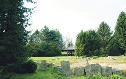 View: conifers, stones, grass and gazebo. stock image