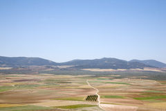 View from Consuegra; Toledo, Stock Images