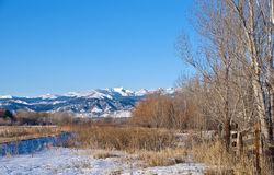 View of the Contental Divide in Colorado in Winter Stock Images