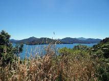 View of Cook Strait Royalty Free Stock Image