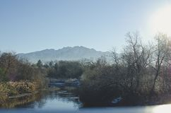 The cold river landscape in the morning. A view of the cool cold steamy creek landscape in the utah basin fro the bridge in the cold morning light royalty free stock photography