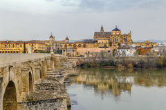 View of Cordoba with Mosque Cathedral, Spain. View of Cordoba with Mosque Cathedral from Guadalquivir river, Spain royalty free stock image