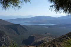 View of the Corinthian Gulf, olive grove, Peloponnese, Greece, l Royalty Free Stock Images