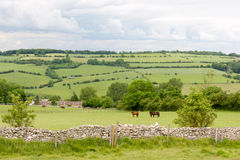 View of the Cotswolds from Cleeve Hill near Cheltenham. Stock Image