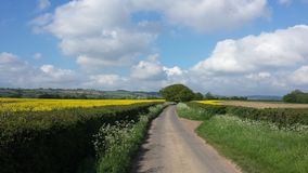 View on country road and fields in England. Stock Photo
