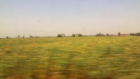 View of country side from train HD Video. View of country side from train Aswan Egypt Africa stock video footage