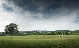 View of the countryside Royalty Free Stock Photos