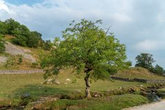 View of the countryside around Malham Cove in the Yorkshire Dale. S National Park Royalty Free Stock Photos
