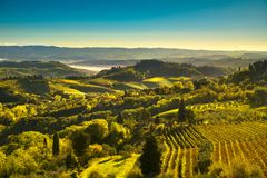 View of countryside and chianti vineyards from San Gimignano. Panoramic view of countryside and chianti vernaccia vineyards from San Gimignano at sunrise Royalty Free Stock Photography