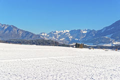 View on countryside in snow covered Switzerland in winter Royalty Free Stock Photo
