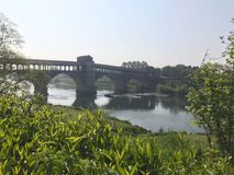 View of the covered bridge in pavia. From the meadow surrounding the river Stock Photos