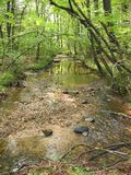 View of a creek on the Appalachian Trail in southern Pennsylvania stock photography