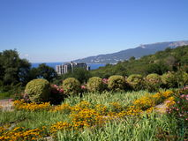 View of the Crimean coast. From the territory of the Nikitsky Botanical Garden near city Yalta stock image