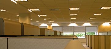 View from the Cubicle. A photograph of an office setting with multiple cubicles Royalty Free Stock Images