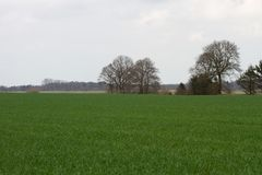 View on cultivated fields in rhede emsland germany. And photographed in multi colored on a walk in the landscape at a summer day royalty free stock images