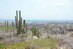 View on the cunucu from Aruba island Stock Photography
