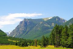 A view in Custer National Forest Royalty Free Stock Photography