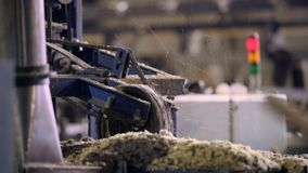 View of cutting machinery at saw mill stock video footage