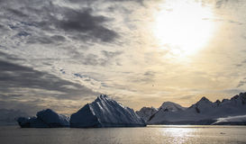 View on Cuverville Island`s bay with huge Icebergs, Antarctica Royalty Free Stock Image