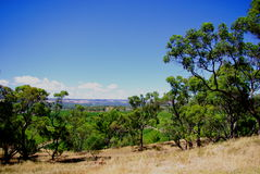 View from D'Arenberg. Photograph taken at D'Arenberg Winery in the McLaren Vale (South Australia royalty free stock photo