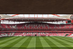 View of Da Luz Stadium: Red Empty Seating and Green Soccer Pitch Stock Photos