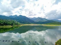 Rain forest North thailand tree nature. View from dam located in changmai stock photography