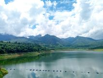 Rain forest North thailand tree nature. View from dam located in changmai royalty free stock photos