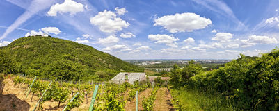 View of the Danube of Vienna and the Saint Leopold's Church on Leopoldsberg Royalty Free Stock Photo