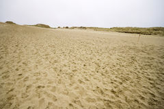 View of Dead Dunes Royalty Free Stock Image