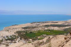 View of the Dead Sea Royalty Free Stock Image