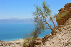 View of the Dead Sea. Royalty Free Stock Photo