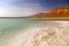 View of Dead Sea coastline Stock Images