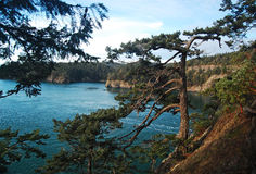 View from Deception Pass State Park, Washington royalty free stock image