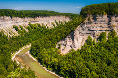 View of the deep  Genesee River gorge in Letchworth State Park, Stock Photo
