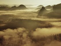 View into deep misty valley in Saxon Switzerland. Sandstone peaks increased from foggy background, the fog is blue orange Royalty Free Stock Photos