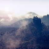 View into deep misty valley in Saxony Switzerland. Sandstone peaks increased from heavy colorful fog. Royalty Free Stock Image