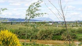 View Delta del Llobregat Stock Images