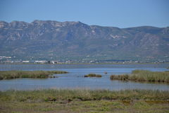 View at the Delta of  Ebro river in Spain with mountains Stock Images
