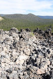View of Deschutes National Forest. With pond and obsidian flow of rocks Stock Image