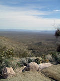 View of Desert Floor. View from mountains of desert floor with prickly pair and cholla jumping cacti Stock Photography