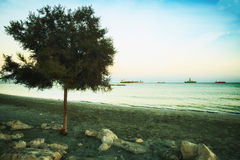 View of the deserted beach of the Cyprus resort of Limassol at sunset of the autumn day. The deserted beach of the Cyprus resort of Limassol with ships on the stock photo