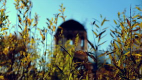 View of destroyed old temple in fall through the grass stock footage