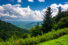 View from Devils Courthouse Overlook, on the Blue Ridge Parkway Stock Image